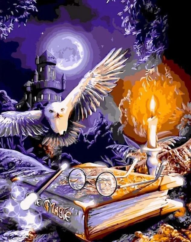 Картина по номерам Гарри Поттер Сова и книга, 40х50см купить
